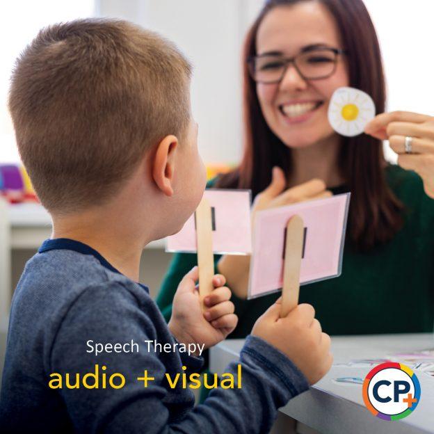 Visual Cues in Speech